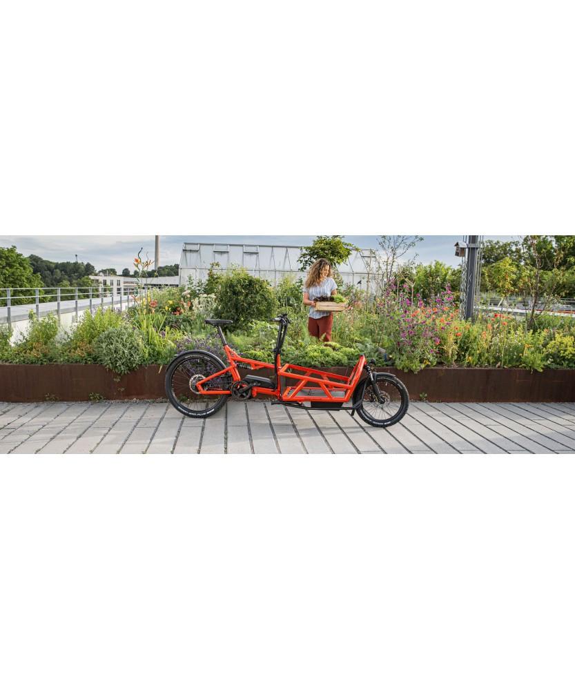 Vélo cargo, la mobilité durable