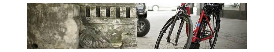Vélo hollandais électrique Riese & Müller, gamme Swing, col de cygne
