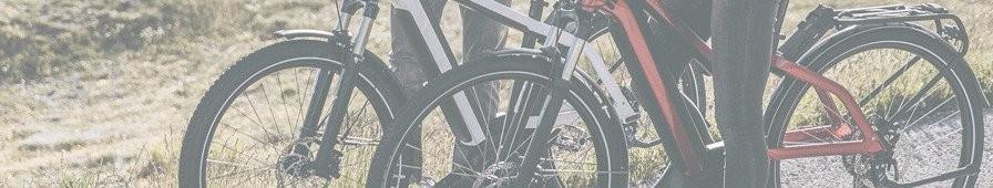 Vélo électrique polyvalent, VTC électrique tous terrains, tous chemins