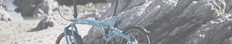 Folding bike versatile, suspended Birdy – 2R Aventure