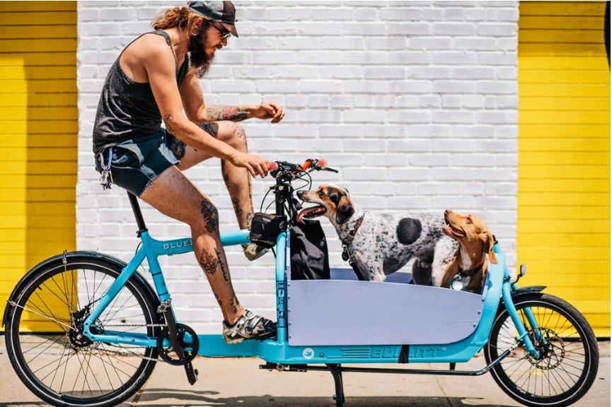 Sam Polcer - photos de cyclistes à NYC