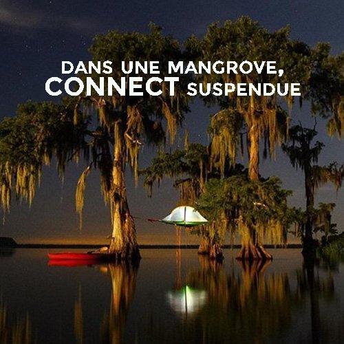 dormir dans une mangrove - tente suspendue connect