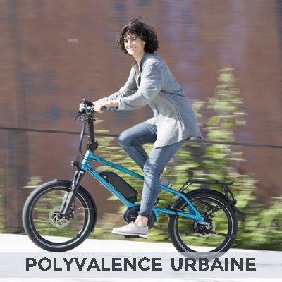 Le vélo électrique polyvalent