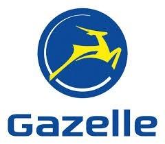 Gazelle, le vélo hollandais par excellence